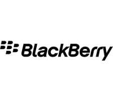 blackberry ickon